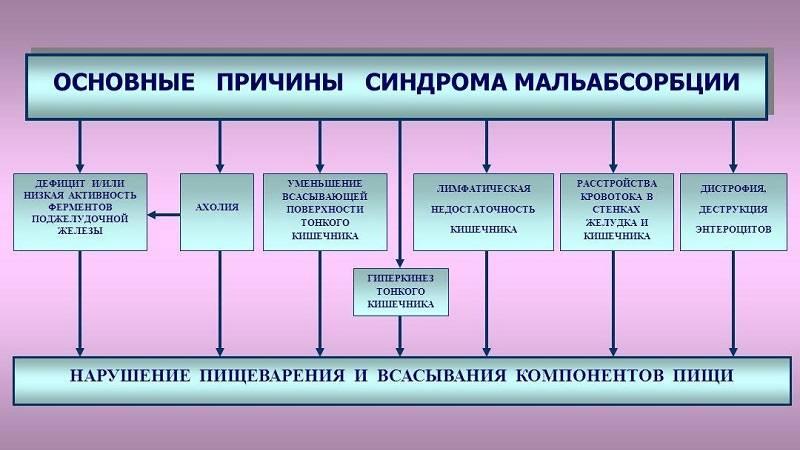 CHto-takoe-sindrom-malabsorbtsii-i-maldigestii-3.jpg