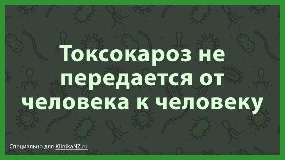 toksokaroz-citata-1.png