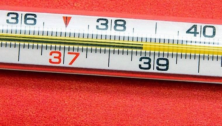 1548409619_bolit-zhivot-i-temperatura.jpg