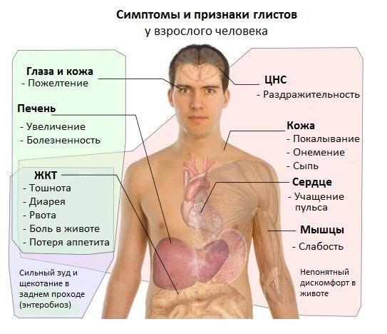 Simptomyi-gelmintoza.jpg