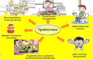 probiotics-300x194.png