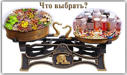 Что выбрать: лекарства или фитотерапию?