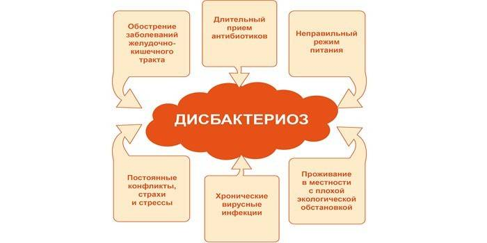 1544799660-tekst.jpg