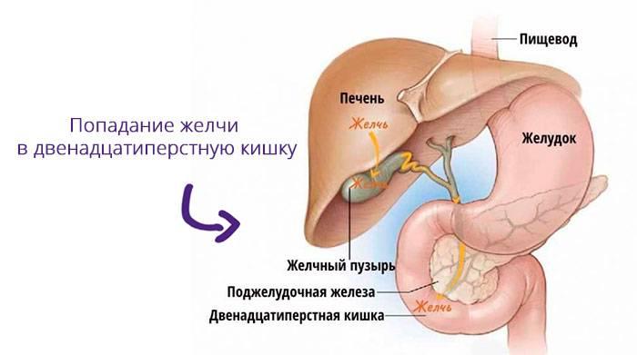 zhelchekamennaya-bolezn-5.jpg