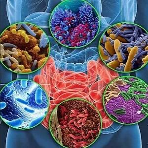 Samye-effektivnye-preparaty-ot-disbakterioza-5.jpg