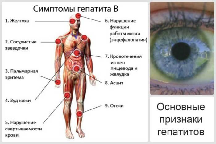 osobennosti-protekaniya-gepatita-b-4.jpg