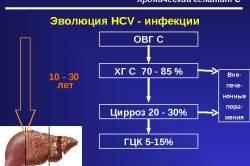 E`volyutsiya-infektsii-250x166.jpg