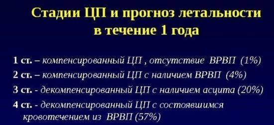 cirpechsk-zhivut-2-550x252.jpg