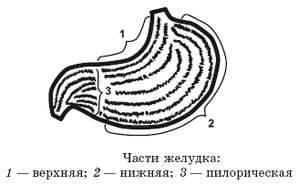 1-49.jpg
