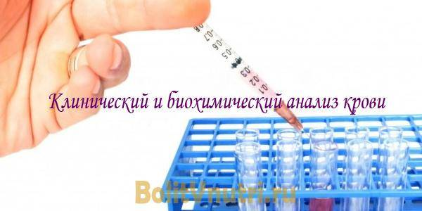 analiz_biohimiy.jpg