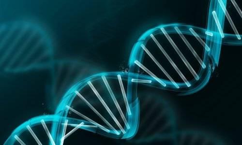 geneticheskaja-predraspolozhennost.jpg