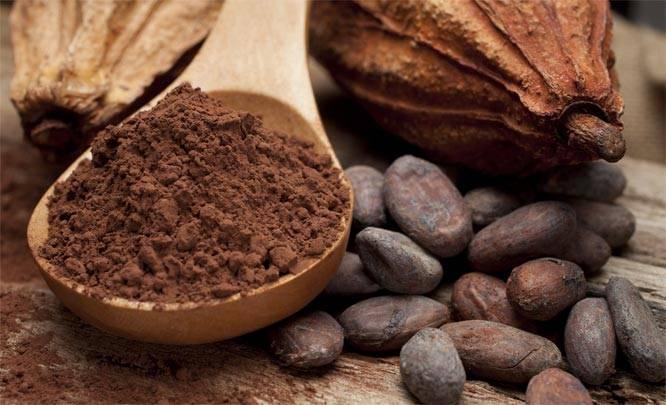 kakao-boby.jpg