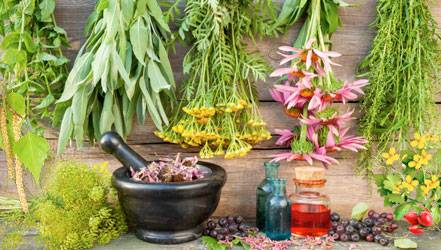 cleaning-liver-with-herbs.jpg