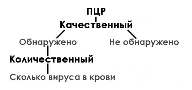 Алгоритм-сдачи-анализов-на-гепатит-С.png