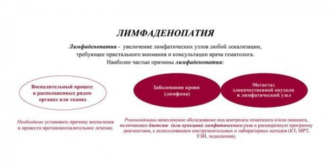 1542200233-tekst.jpg