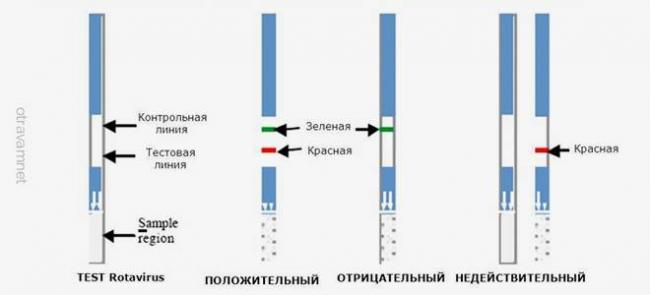 rezultaty_testa_na_rotavirus-1.jpg