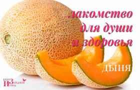 dynya-01.jpg