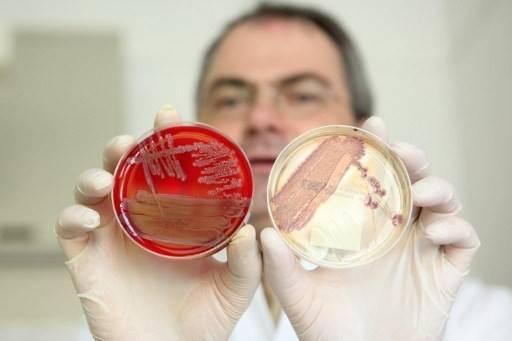 kishechnaya-infektsiya2.jpg