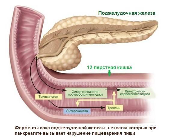 pri-pankreatite-8.jpg