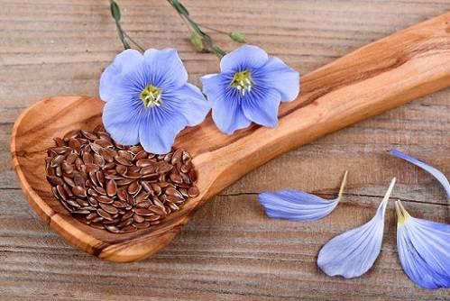 semena-lna.jpg