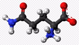 amino-300x173.jpeg