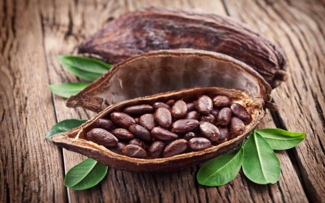 kakao-pri-yazve2.jpg