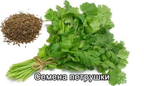 Lechenie-zheludochno-kishechnogo-trakta-lekarstvennymi-preparatami-i-narodnoj-medicinoj-6-1-500x300.jpg