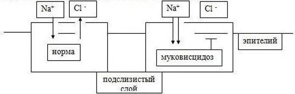 pn_3.jpg