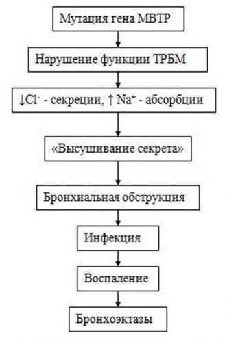 pn_4.jpg