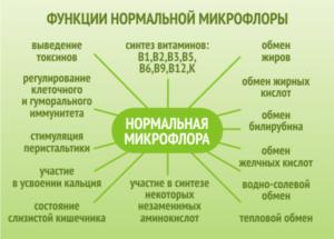 Mikroflora-kishechnika-300x215.png