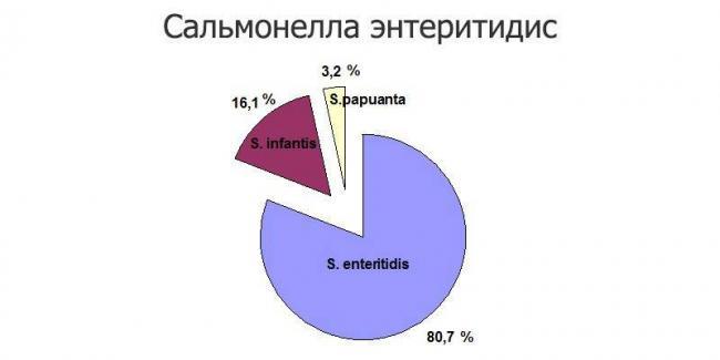 salmonella-e%60nteritidis-e1502860719534-800x400.jpg