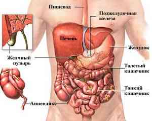 boli-v-kishechnike-pered-defekaciej_1.jpg