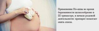 tabletki-10-e1540303131346-320x103.jpg