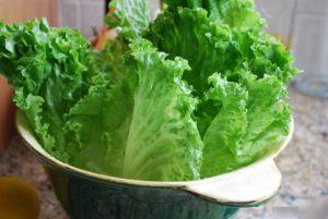 salat-300x201.jpeg