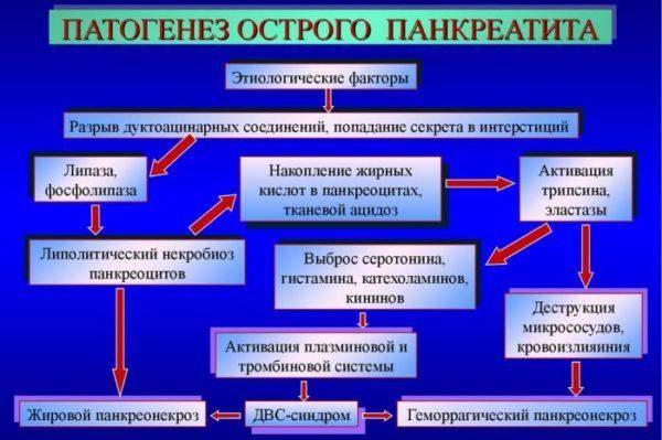 Patogenez-ostrogo-pankreatita-600x399.jpg