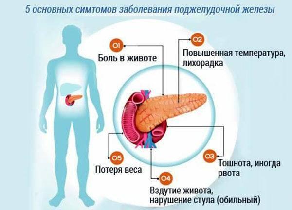 5-signalov-organizma-o-sboe-v-rabote-podzheludochnoy-zhelezyi-600x432.jpg