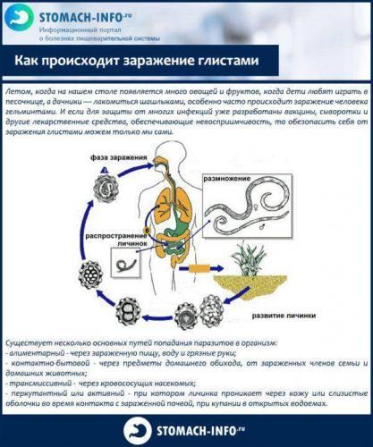 Kak-proiskhodit-zarazhenie-glistami-600x719.jpg