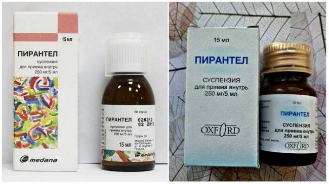 simptomy-gelmintoza-u-vzroslyh-10.jpg